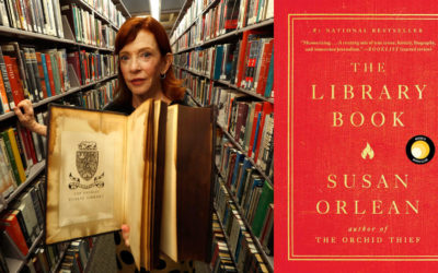 July book club book explores world of books